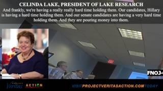 Download Democratic Pollster Celinda Lake Tells Union Workers To Lie To Voters Video