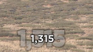 Download Long Range Hunting - 54 KILL SHOTS - Extreme Outer Limits TV Video