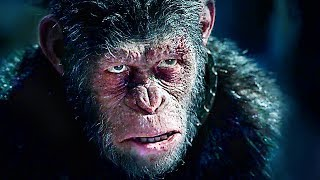 Download WAR FOR THE PLANET OF THE APES - ″Caesar VS Woody″ - Movie Clip (2017) Video