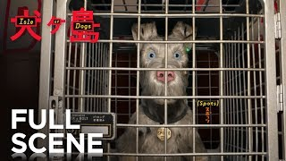Download ISLE OF DOGS | Extended Preview - Watch 10 Full Minutes | FOX Searchlight Video