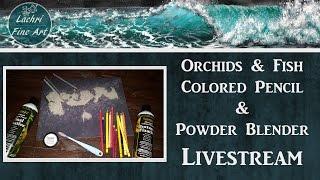 Download Colored Pencil & Powder Blender Livestream & Art Q&A w/ Lachri Video