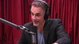 Download Jordan Peterson Explains the Male Dominance Hierarchy - The Joe Rogan Experience Video
