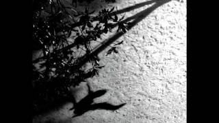 Download Max Richter - On the Nature of Daylight Video