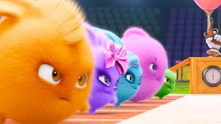 Download Sunny Bunnies - OLYMPICS COMPILATION | Cartoons For Children | Funny Cartoons For Children Video