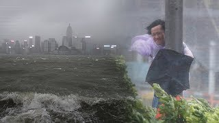 Download Devastating force of Typhoon Hato captured on video Video