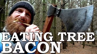 Download Eating TREE BACON like a BEAVER with Viking AXE! | Cambium Survival Food | Tormund Giantsbane Video