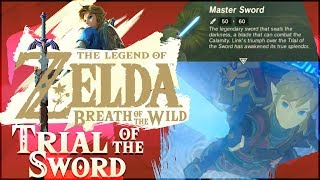 Download Trial of the Sword DLC 100%   The Legend of Zelda: Breath of the Wild! [ALL 45 ROOMS] Video
