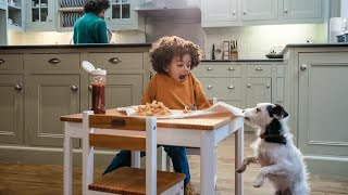 Download Bought By Many pet insurance TV advert - #LoveYourPetBetter (40 secs) Video