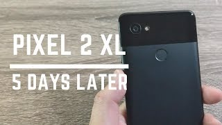 Download Google Pixel 2 XL // My Thoughts 5 Days Later Video