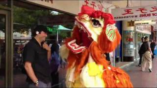 Download Lion Dance by the Chinese Dance School of Sydney Video