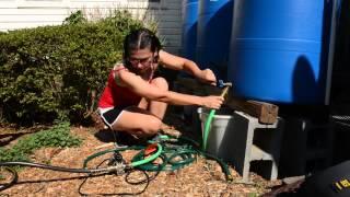 Download Using Rain Barrels to Irrigate Your Garden Video