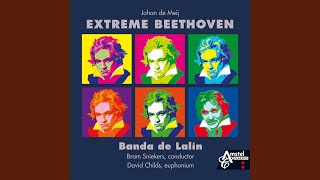 Download Extreme Beethoven Video