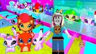 Download Adopting The Cutest Pets Ever! - Being A Mermaid In Enchantix High School Roblox Game Video