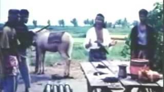 Download RHOMA irama - Kawula Muda Video