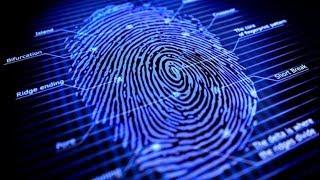 Download Nuevo Grado en Criminología Video