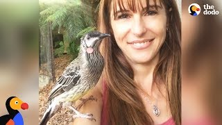 Download Bird Snuggles With Woman Who Rescued Him | The Dodo Video