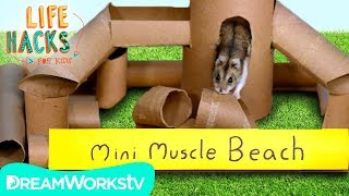 Download Hamster Jungle Gym + Other Small Pet Hacks | LIFE HACKS FOR KIDS Video