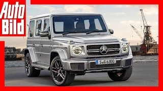 Download Mercedes-AMG G 63 (2018) Details/Erklärung Video