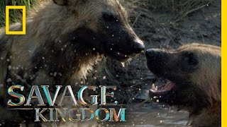 Download Stay Together, Survive Together | Savage Kingdom Video