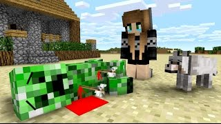 Download Creeper Life - Minecraft Animation Video