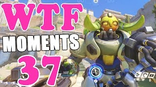 Download Overwatch WTF Moments Ep.37 Video