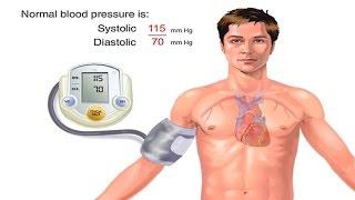 Download How Blood Pressure Works Animation - Understanding Blood Pressure Measurement Monitor Readings Video Video