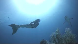 Download Linden Wolbert Underwater Mermaid Model (Mermaids in Motion) Video