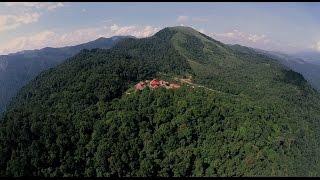 Download WILD PLANET - Luxury Jungle Resort- Longer Version Video