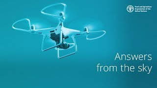 Download Drones help map out at-risk agricultural land in the Philippines (Long version) Video