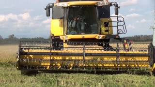 Download RICE HARVEST 2013 in NORTH WEST ITALY - The Best of RB74ify (Motor Sound) Video