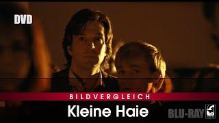 Download Kleine Haie - Jubiläums-Edition (Blu-ray- und DVD-Trailer) Video