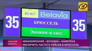 Download Рейс по маршруту Минск – Брюссель от «Белавиа» Video