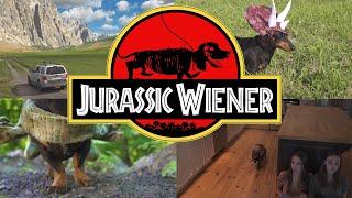 Download Ep. 1: ″Jurassic Wiener″ - Dachshund Dinosaurs! Video