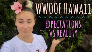 Download The Reality of Work Trade in Hawaii // Expectations vs. Reality Video