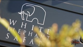 Download White Elephant Safari Lodge - Accommodation Pongola South Africa - Africa Travel Channel Video