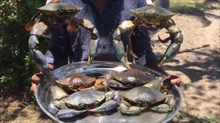 Download Big Crab Biryani - Cooking Tasty Biryani with Big Mud Crabs in Our Village Video