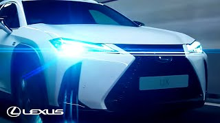 Download Discover the Lexus UX Video
