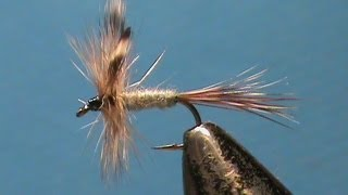 Download Fly Tying For Beginners Adams with Jim Misiura Video