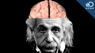 Download How Einstein's Brain Is Different Than Yours Video