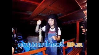 Download จะหาปลามาให้เธอจี่ EP.31 สาวลาวตกหมึกกินสดกลางทะเล Lao cute girl Eating Squid Sasimi Video