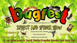Download Bugfest Show - What a fantastic day! Video