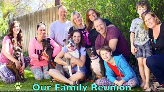 Download Mama Iris and pups 1 year Family Reunion - Happily ever after. Video