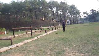 Download Commando and SWAT Team training of Meghalaya Police. Video