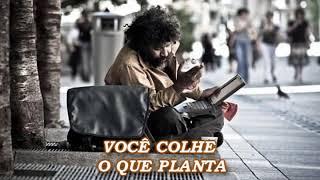 Download VOCÊ COLHE O QUE PLANTA (UMA LINDA REFLEXÃO DE VIDA) veja!!! Video