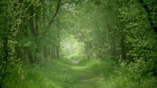 Download Air - Johann Sebastian Bach Video
