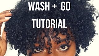 Download 3C Natural Hair Wash + Go Tutorial Video
