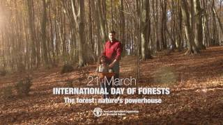 Download International Day of Forests 2017 Video