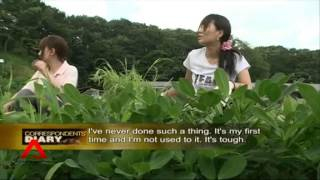 Download New Generation Farmers in Japan Video