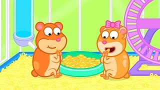 Download Lion Family Hamster was Released Cartoon for Kids Video