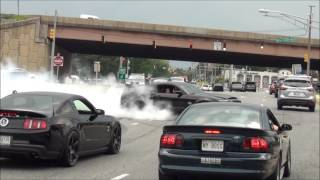 Download EPIC Burnout Shelby GT500 Super Snake // Diesel Truck Pulled Over // Sick Burnout Mustang Cobra !!! Video